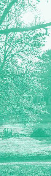 bandeau-vertical-vert-entretien-espaces-verts